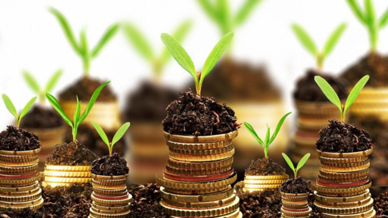 guadagnare investendo piccole somme migliore classe di trading online per criptovaluta